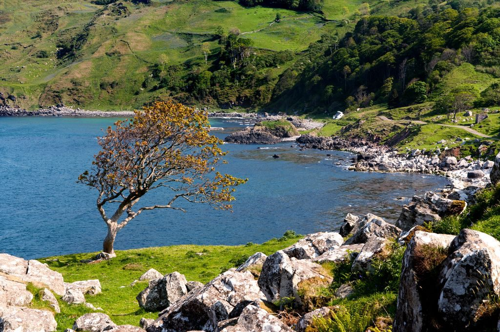 The landscape of County Mayo is reflected in the poetry of Michelle O'Sullivan
